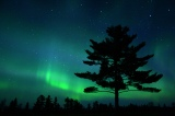 Monday mood-lifter: the Northern Lights